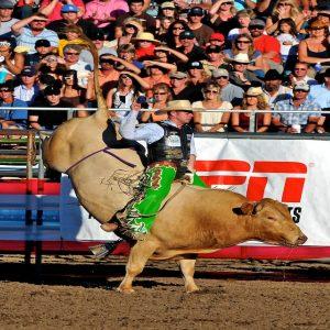 Bull riding at California Mid State Fair