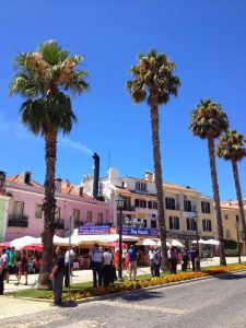 What to do in Lisbon- Cascais palms