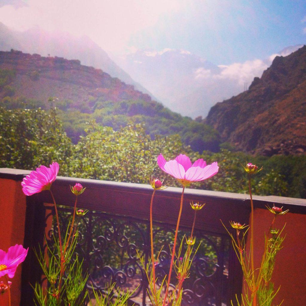 flowers kasbah du toubkal