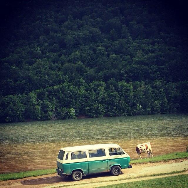 Photo: Buffalo Backpackers hostel